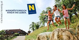 Abenteuerferien in Niederösterreich